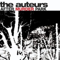 The Auteurs After Murder Park