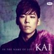 KAI 愛という名前 [Japanese Version]