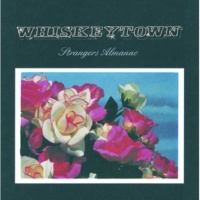 Whiskeytown Not Home Anymore [Album Version]