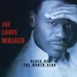 Joe Louis Walker Blues Of The Month Club