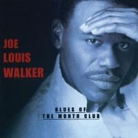 Joe Louis Walker Hidden Feelings [Album Version]