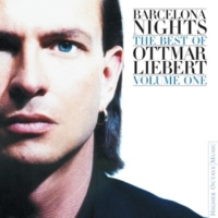 Ottmar Liebert Festival (Of 7 Lights)