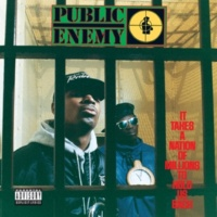 Public Enemy Mind Terrorist