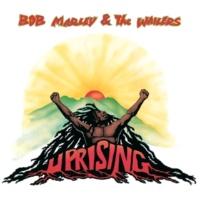 ボブ・マーリー & ザ・ウェイラーズ Forever Loving Jah [Album Version]