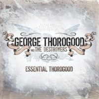 George Thorogood And The Destroyers The Sky Is Crying (Live)