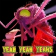 Yeah Yeah Yeahs Mosquito [Deluxe]
