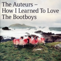 The Auteurs School