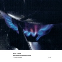 Evan Parker Electro-Acoustic Ensemble Spouting Bowl
