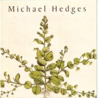Michael Hedges アイ・キャリー・ユア・ハート