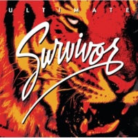 Survivor ロッキン・イントゥ・ザ・ナイト