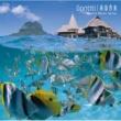 ゴンチチ 南国音楽  Resort Music Series