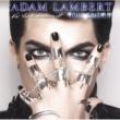 Adam Lambert フォー・ユア・エンターテイメント 来日記念グラマラス・エディション