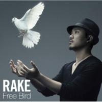 Rake Free Bird