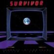 Survivor 制覇への野望