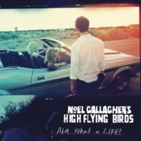 Noel Gallagher's High Flying Birds AKA…ホワット・ア・ライフ!