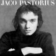 JACO PASTORIUS ジャコ・パストリアスの肖像