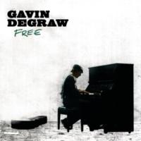 Gavin DeGraw グラス