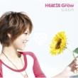 Hearts Grow ひまわり