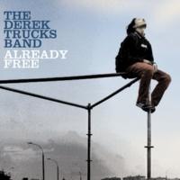 The Derek Trucks Band サムシン・トゥ・メイク・ユー・ハピ