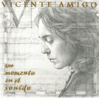 Vicente Amigo 真実の野 (ブレリア)