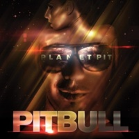 Pitbull feat. Red Foo, Vein & David Rush トゥック・マイ・ラヴ