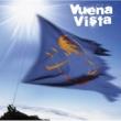 ジン Vuena Vista