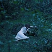 Aimer 眠りの森