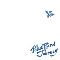 Bivattchee Blue Bird Journey