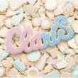 ClariS reunion