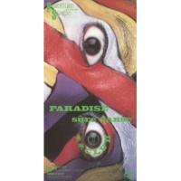 米米CLUB PARADISE