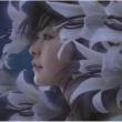 大山 百合香 海の青 空の青