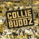Collie Buddz Collie Buddz