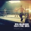 Noel Gallagher's High Flying Birds シュート・ア・ホール・イントゥ・ザ・サン