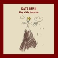 Kate Bush King Of The Mountain