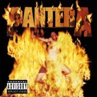 Pantera Death Rattle