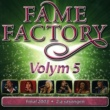 Various artists Fame Factory 5