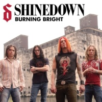Shinedown Burning Bright (Acoustic)