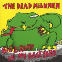 The Dead Milkmen Laundromat Song