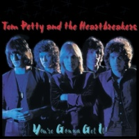 Tom Petty And The Heartbreakers No Second Thoughts