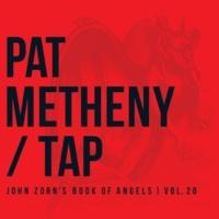 Pat Metheny Tharsis
