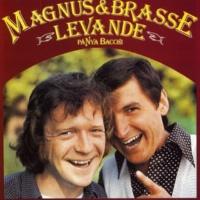 Magnus & Brasse Vattnet nästan renat