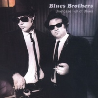 The Blues Brothers Hey Bartender (Live Version)
