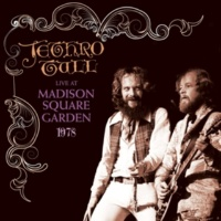 Jethro Tull Sweet Dream (Live At Madison Square Garden)