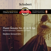 Stephen Kovacevich 6 Moments Musicaux, D. 780: IV. Moderato in C-Sharp Minor
