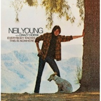 Neil Young & Crazy Horse The Losing End (When You're On)