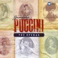 """Antonio Pappano/Roberto Alagna/London Voices/London Symphony Orchestra Le Villi, Act 2 Scene 2: No. 9, Scena drammatica e Romanza, """"Ecco la casa.. dio, che orrenda notte!"""" (Roberto)"""