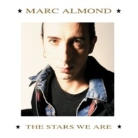 Marc Almond & Gene Pitney Something's Gotten Hold Of My Heart