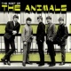 The Animals Most Of The Animals