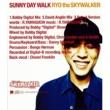 RYO the SKYWALKER SUNNY DAY WALK
