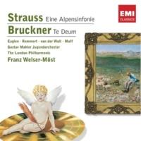 Gustav Mahler Jugendorchester/Franz Welser-Möst Eine Alpensinfonie, Op. 64, TrV 233: Auf dem Gletscher (Festes und sehr lebhaftes Zeitmass)